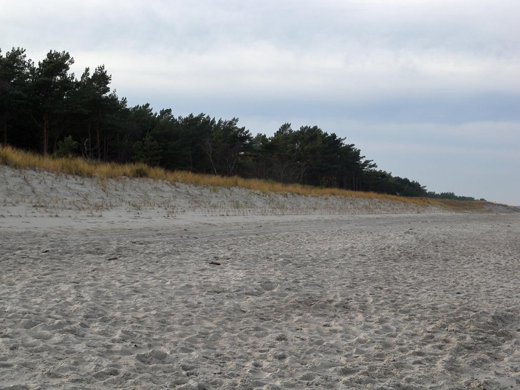 Strand in der Nähe der Ostseeklinik