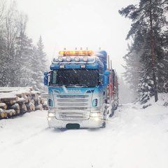 Winter bei den Holzrockern
