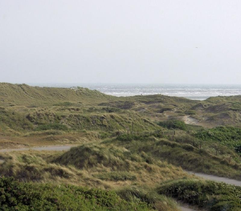 Die Gegend von Norderney